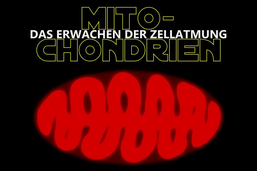 Mitochondrien_star_wars